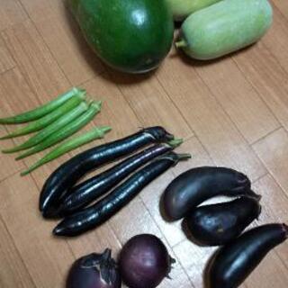お選びお野菜3点盛り