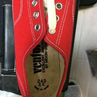 新品未使用 シューズ 24.5cm 赤 コンバースっぽいけど違います