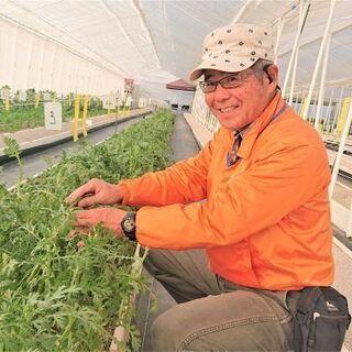 <ミドル・シニア応援>障がいのある方が働く農園のサポート業務!人...