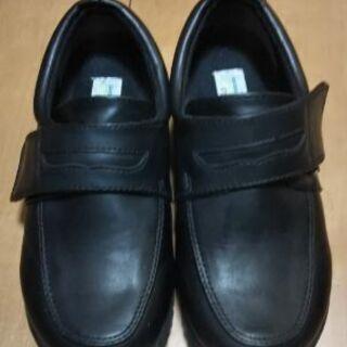 男児  サイズ20靴  卒園  入学
