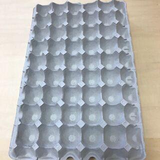 未使用 業務用紙製卵パック5枚 卵トレー 工作・虫の飼育などにも...
