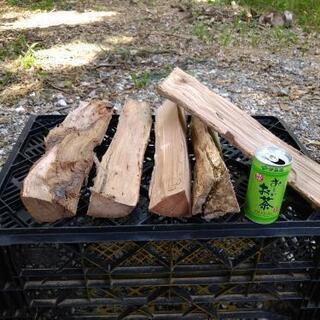 広葉樹の薪!サンゴジュ、ブナ、タブノキなど。長さ35cm。2夏乾...
