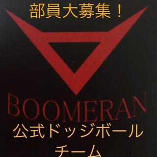 調布市 世田谷区 公式ドッジボール チーム【八幡山BOOMERAN】