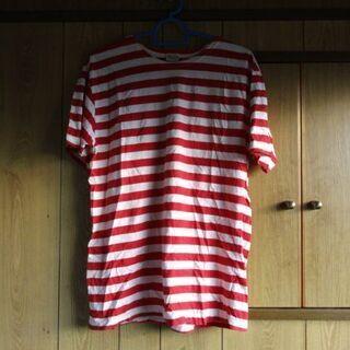 Alasko Tシャツ ラインストライプ L