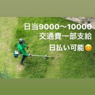 ☆草刈り業務☆ 人手が足りず困っています!!