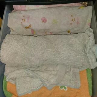 タオル、Tシャツ、綿生地等下さい