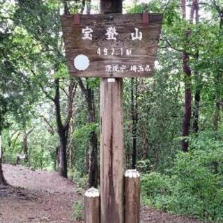 宝登山♪(長瀞アルプス)約7km 3時間