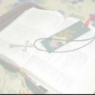 聖書勉強会@渋谷