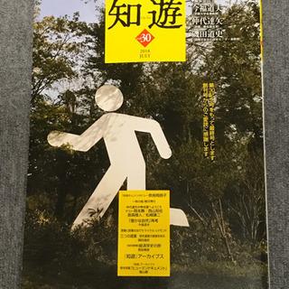 知遊vol.30 定価1,350円