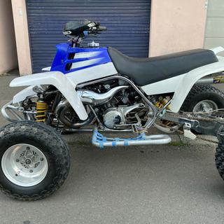 Yamaha YF350Z banshee350 フレームメッキ加工 ヤマハ バンシー ATV YFZ450  YF200 カスタム多数 - バイク