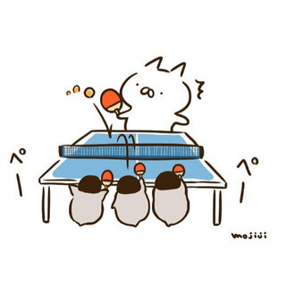 卓球しませんか?🙋♀️