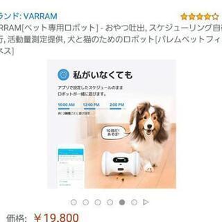 ペット専用 ロボット おもちゃ 新品 未使用 - 大阪市