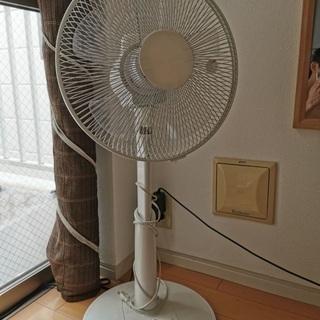 扇風機 23区 送料無料