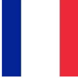 立川でフランス語を教えます(一時間1500円)