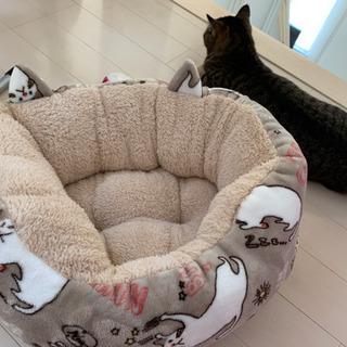 猫 ベッド 2way 冬 もこもこ