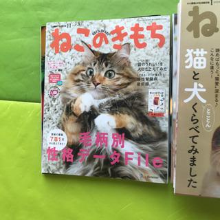 ねこのきもち 猫のきもち まとめ売り26冊