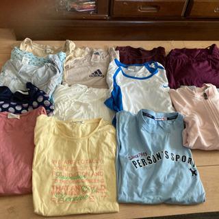 レディースティシャツ