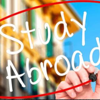 初心者限定の英会話教室、最安の留学の提案してます!1回60分 5...