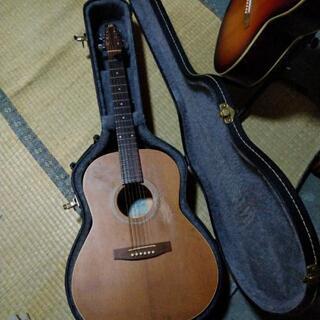 シーガルアコースティックギター s6+Folk エレアコ化済み