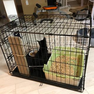 猫 ケージ シングルドア