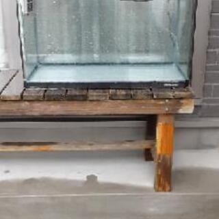 ニッソウ60センチ水槽
