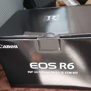 EOS R6 RF24-105 STM レンズキット