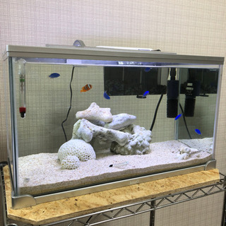 海水魚水槽セット(取引中)