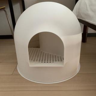 猫 トイレの画像