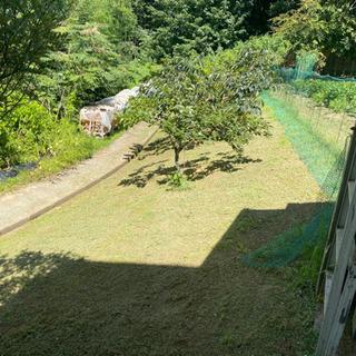 【見積り無料】格安でお庭・空地の草刈りします!幸手市/加須市
