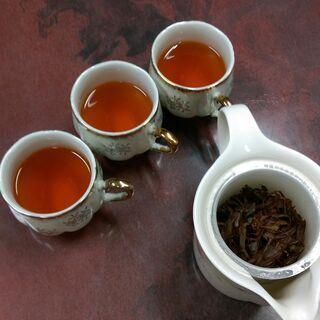 温泉宿で紅茶づくり♨