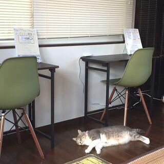 女性専用とキッズ専用のパソコン教室Macaronです♬WordやExcelからプログラミングのコースもあります(●´ω`●)の画像
