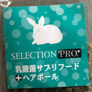 セレクションプロプラス 乳酸菌サプリフード