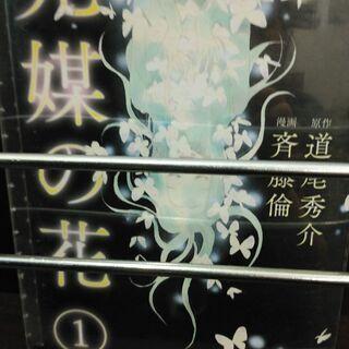 激安!光媒の花「1~3」全巻・単各4冊 計7冊