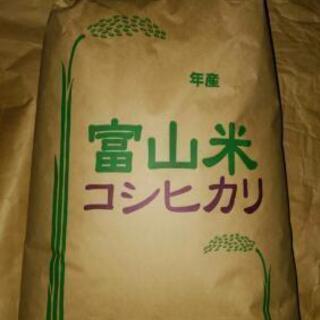 令和2年コシヒカリ1等米 玄米10kg(富山県産)