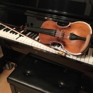 石井バイオリン(ヴァイオリン)教室 レンタルバイオリンもご用意し...