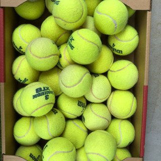 テニスボール中古