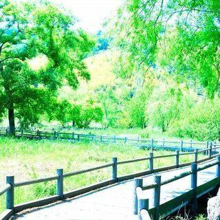 独身限定【みどり市】羽生水郷公園お散歩ピクニック(9/22…