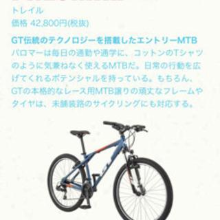 GT パロマー XS