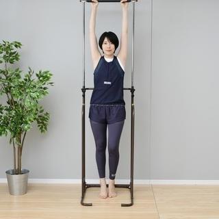 ぶら下がり健康器スペシャルセット【新品・未使用品】