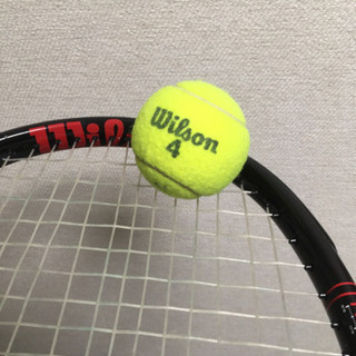 オフ 大阪 テニス ネット