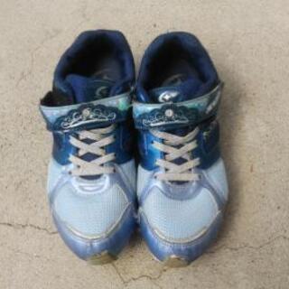靴青20cm
