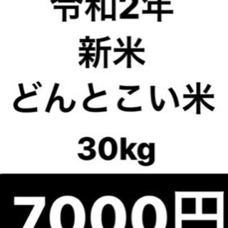 新米 令和2年どんとこい米 30kg