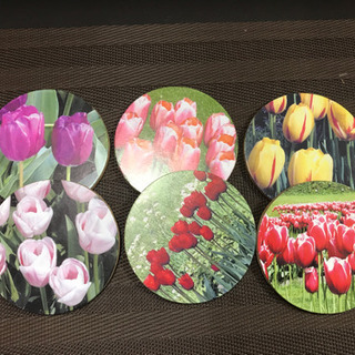オランダ チューリップ画像 コースター 6枚組 円型