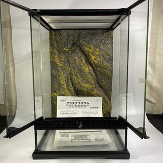 ジェックス エキゾテラ グラステラリウム 3045 爬虫類