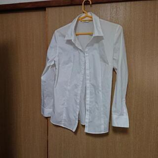 白いシャツ(女性用)