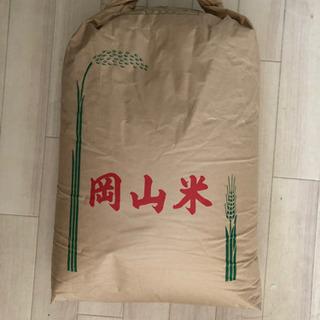 津山産コシヒカリ 玄米 令和元年産