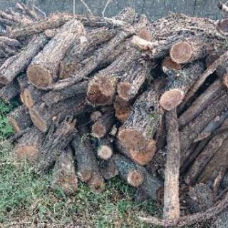 広葉樹 薪用原木