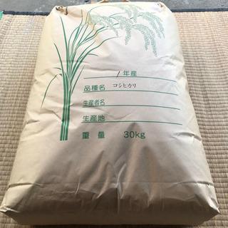 千葉県木更津産 コシヒカリ 30kg