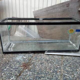 ガラス製水槽★今日夕方引取り★