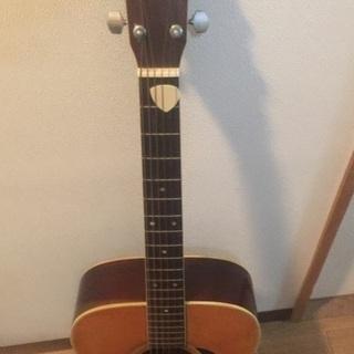 morales falcon アコースティックギター